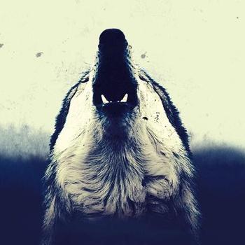 Wolf Down - MMXI